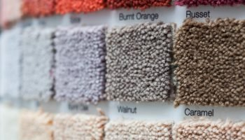 Carpet display in a retail shop with multiple square samples showing variations in colour and pile quality at an oblique angle with shallow dof